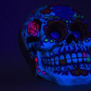 Skull UV 22in (2)