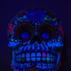 Skull UV 22in (3)