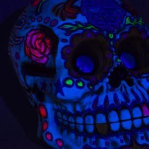 Skull UV 22in (4)